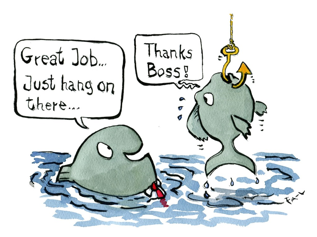 Fish hooked being dragged out of the water while a boss fish say: great job, just hang on there. Drawn Journalism by Frits Ahlefeldt