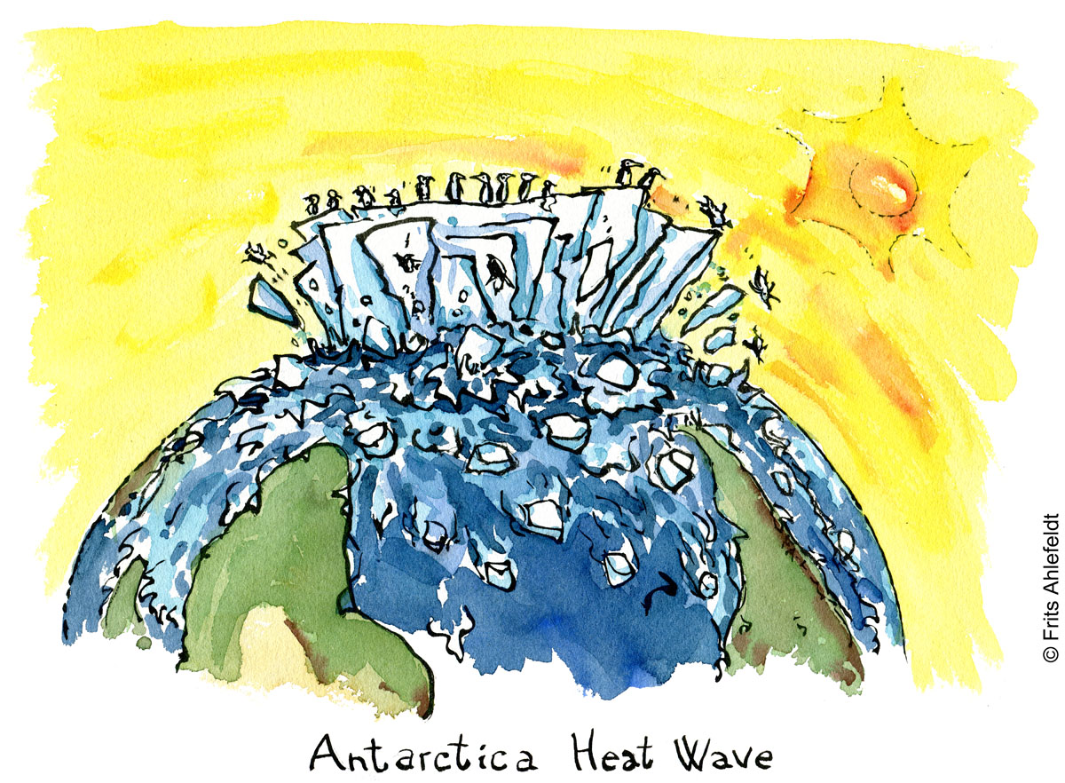 Drawing of huge melting icebergs and glaciers melting with penguins falling off under a yellow sun. Drawn journalism by Frits Ahlefeldt