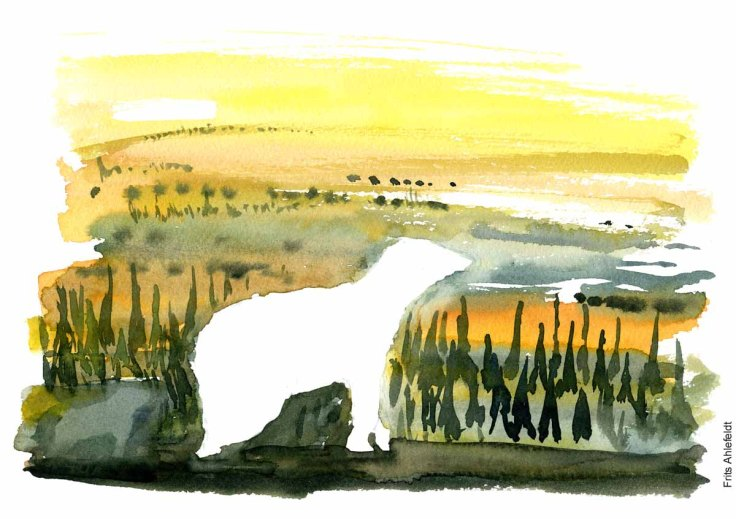 Watercolor painting polar bear against yellow background - Watercolor by Frits Ahlefeldt