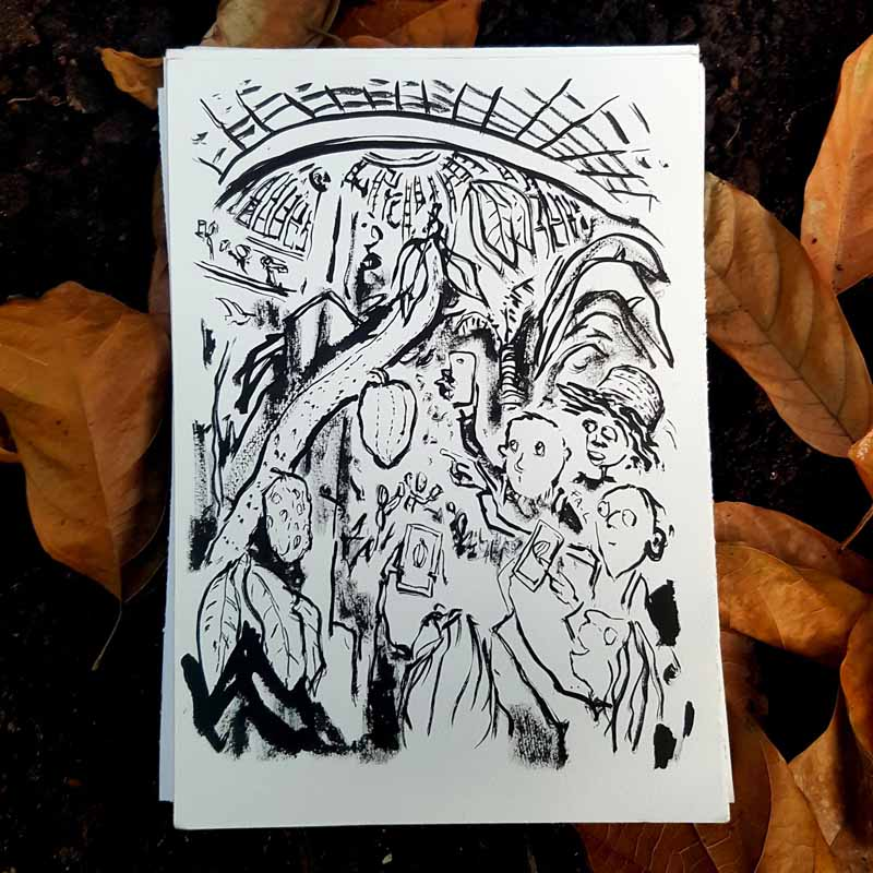 Ink sketch of cacao tree in the botanical garden Copenhagen. Art by Frits Ahlefeldt