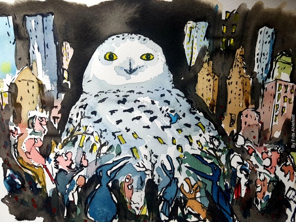 Illustration of snowy-owl-in-new-york-2021-frits-ahlefeldt